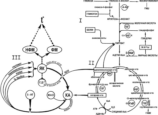 Схема взаимосвязи и