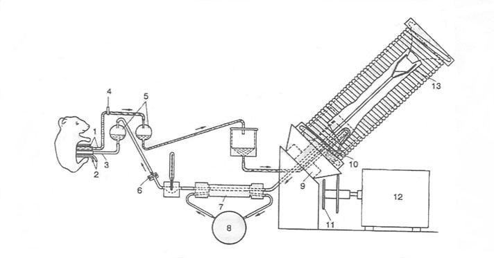 Рис 42 принципаальная схема